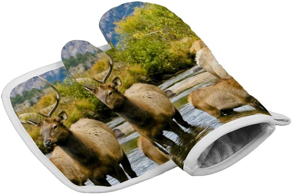July-Seven Deer Wilderness Elk in Rocky Mountain National Park Oven Mitts,Professional Heat Resistant Microwave BBQ Oven Insulation Thickening Cotton Gloves Baking Pot Mitts with Soft Inner Lining