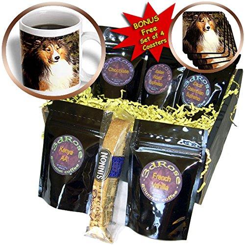 Dogs Sable Border Collies - Sable Border Collie - Coffee Gift Baskets - Coffee Gift Basket (cgb_665_1)