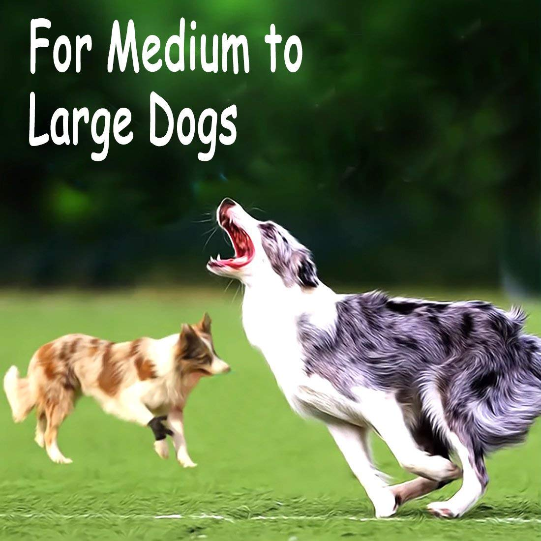 Pet Supplies Diy House Large Dog Chew Rope Toys For Aggressive