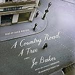 A Country Road, a Tree: A Novel | Jo Baker