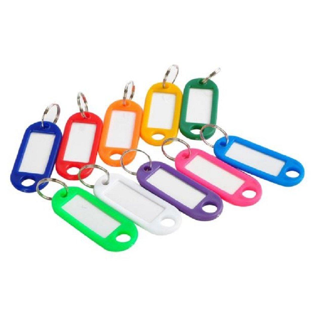 Llaveros 100Pcs,Zolimx Llaves Plásticas Multicolors Etiquetas Anillos Dominantes Clasificados con Etiquetas de Identificación Etiqueta de la Tarjeta ...