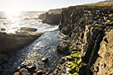 Wild Sonoma Coast by Lance Kuehne Art Print, 24 x 16 inches
