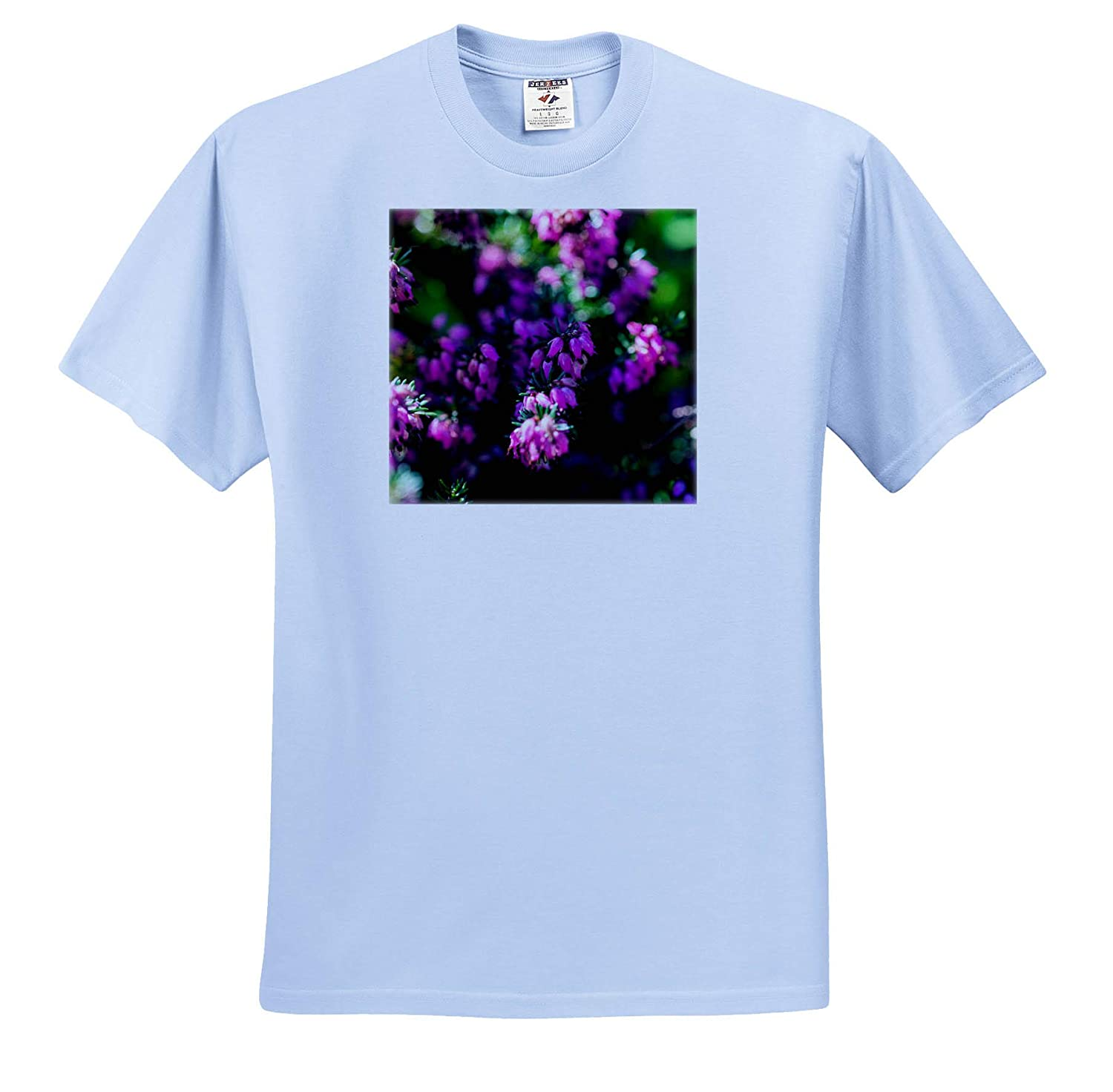 Purple Flowers on a Flowerbed 3dRose Alexis Photography ts/_311029 Adult T-Shirt XL Beauty of Spring Flowers