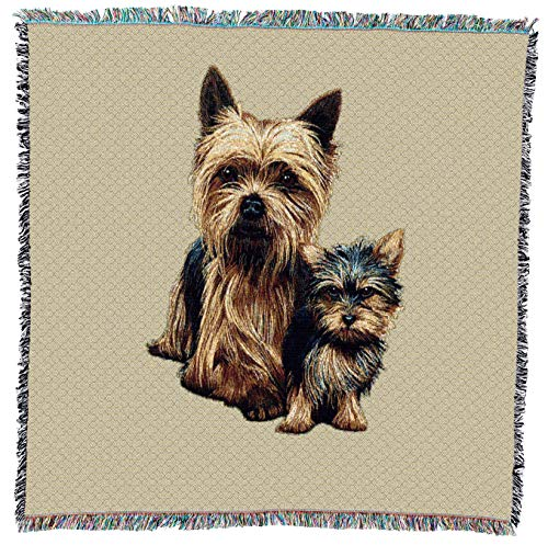Pure Country Weavers - Yorkshire Terrier with Puppy Woven Throw Blanket with Fringe Cotton. USA Size 54x54