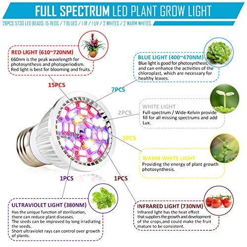 Amazon com : Led Grow Light Bulb, 28W Full Spectrum Grow