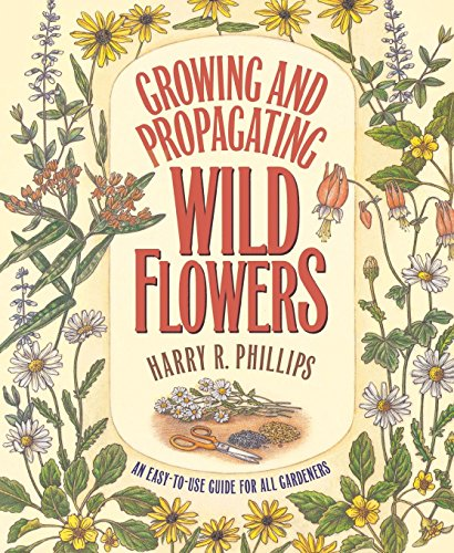 Growing and Propagating Wild Flowers (Best Wildflower Seeds Uk)