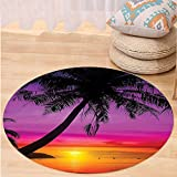 Best Tea Time Mouse Traps - VROSELV Custom carpetTropical Decor Palm Tree Silhouette on Review