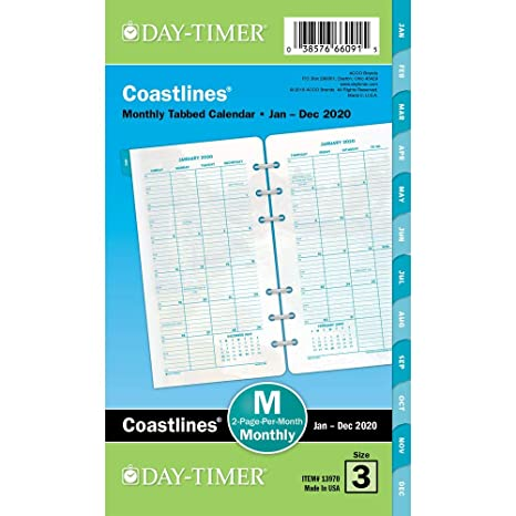 Amazon.com: Day-Timer 2020 - Recambio de planificador ...