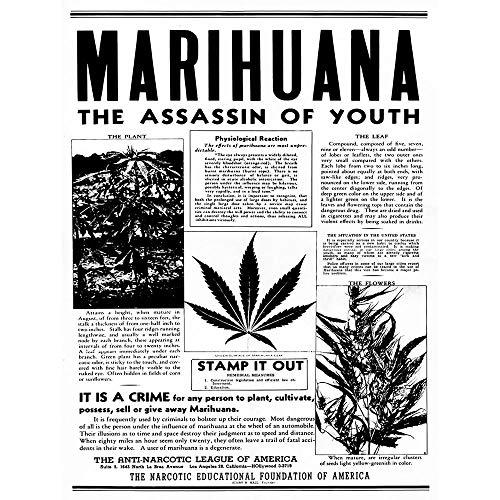 Advertising Drug Awareness Warning Marijuana Weed Cannabis Panic USA Unframed Wall Art Print Poster Home Decor Premium