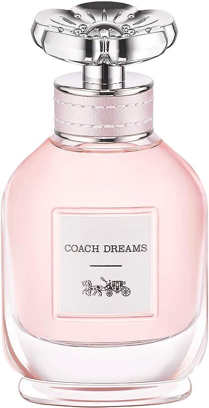 dream world x perfume precio