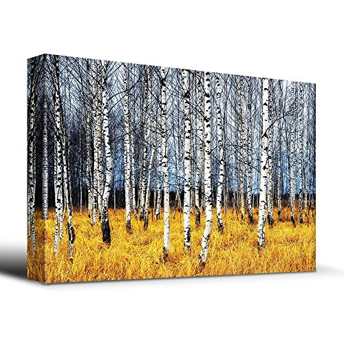 Wall26 - Beautiful Aspen Trees Fall colors - Canvas Art Home Decor - 24x36 inches