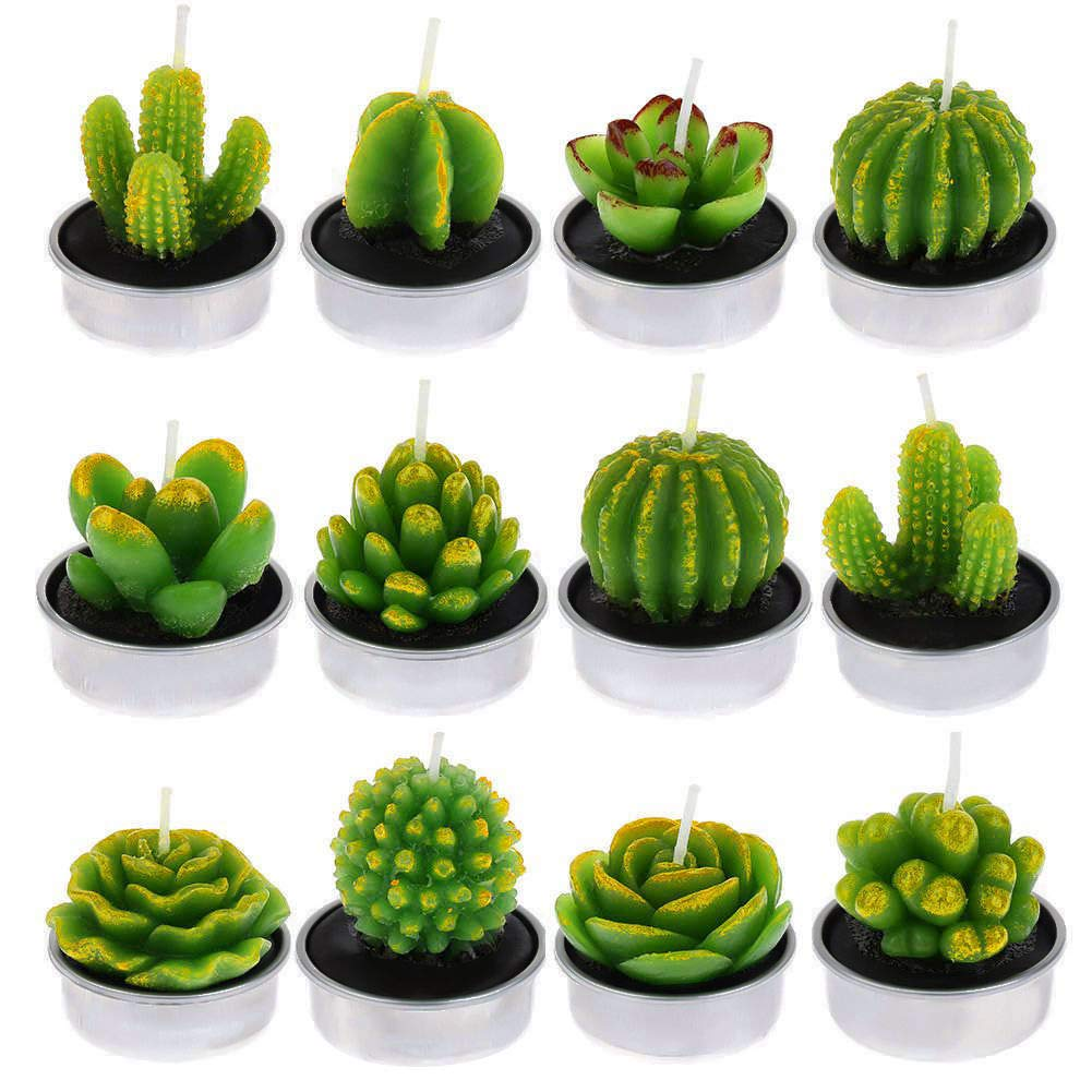 Xinzistar 12 Pieces Cactus Tealight Candles Handmade Delicate Succulent Cactus Candles for Birthday Party, Wedding, Spa, Home Decoration (Style 1)