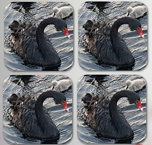 Black Swan Coasters Set of 4, with Baby Cygnet Design - 3.5