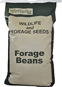 PlotSpike Forage Soybeans Plant, 50-Pound