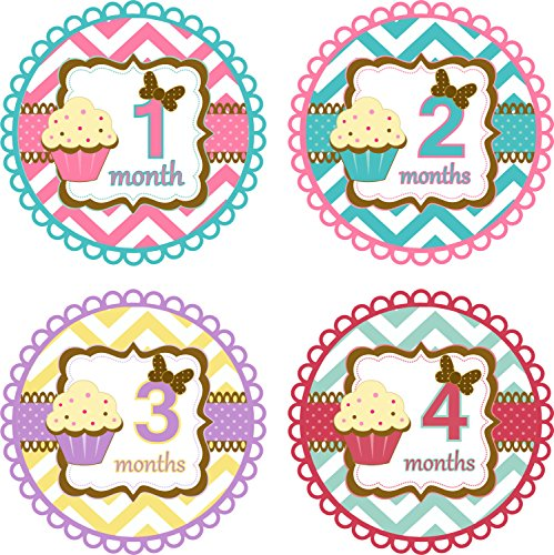 Little LillyBug Designs - Baby Montly Stickers -Girl - Vintage - Cupcake