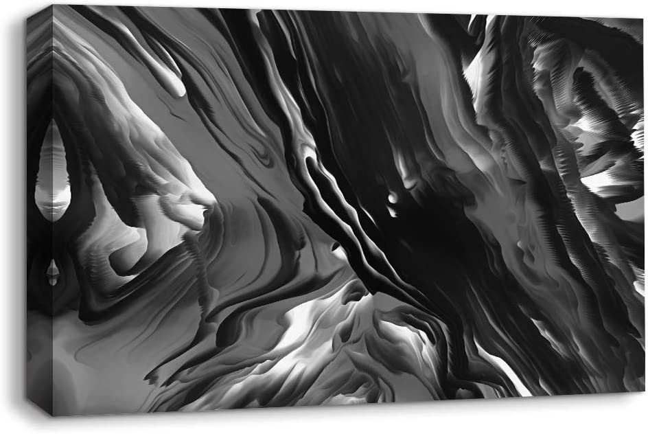NWT Canvas Wall Art Abstract Black and White Painting Artwork for Home Prints Framed - 16x24 inches