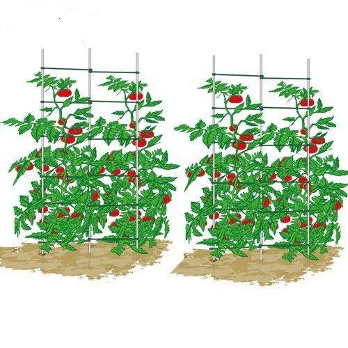 ecotrellis expandible enrejado, plantas escalera, escalera de ...
