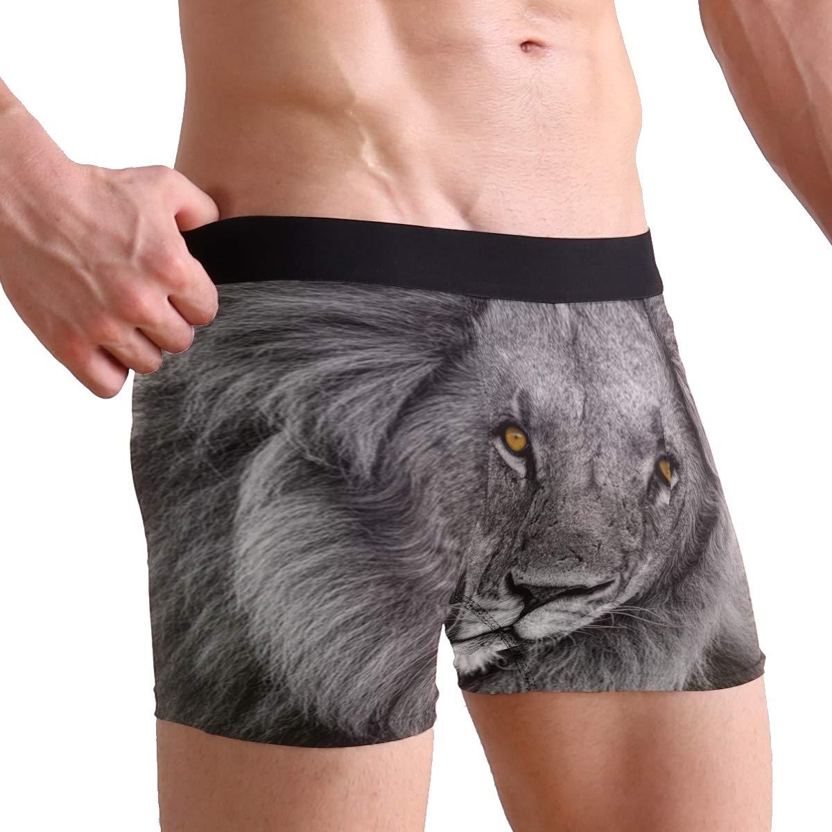 WaKaBlues Black White Lion Portrait Mens Sport Boxer Brief Breathable Underwear