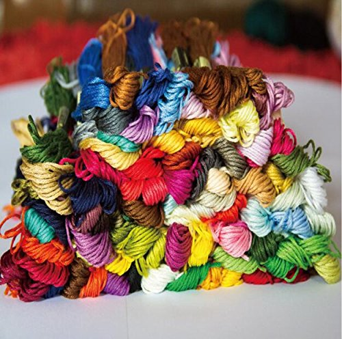 Wanky Embroidery Floss 100 Skeins(26ft Each Thread Rainbow Color Cross Stitch Crafts Floss ()