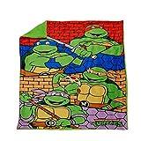 Teeange Mutant Ninja Turtles Mink and Sherpa Blanket