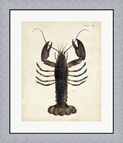Amazon.com: Vintage Lobster by DeKay Framed Art Print Wall Picture ...