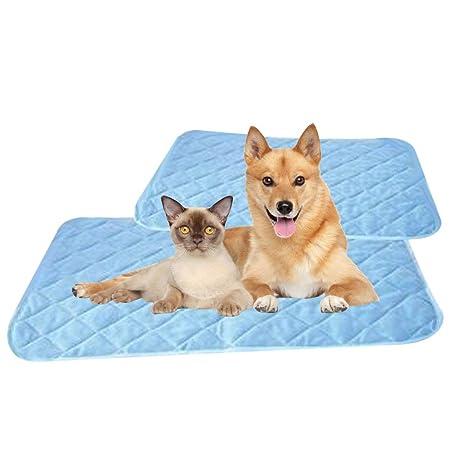 CmNo1 Alfombrilla de Refrigeración para Perro, colchoneta de Refrigeración para Mascotas, Cama para Gatos