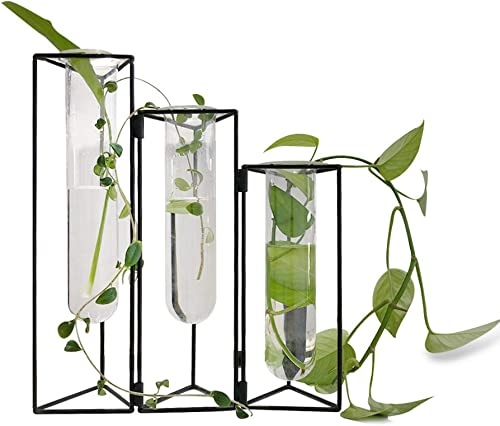 SHINA 3PCS Test Tube Vase