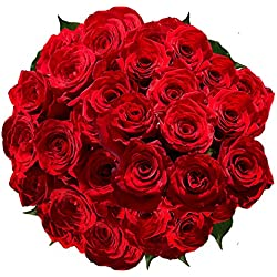 100 Red Roses Special for Valentine's Day