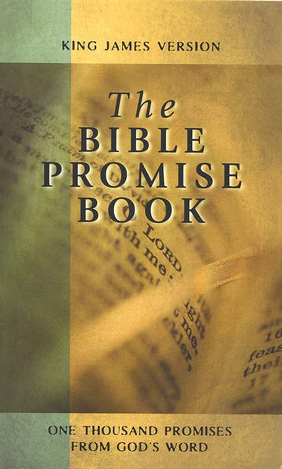 The Bible Promises Book Over One Thousand Promises from The Bible