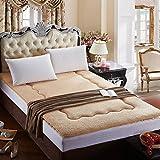 DHWJ Warm cashmere mattress,Tatami mattress Mattress Student dormitory thick mat-A 150x200cm(59x79inch)
