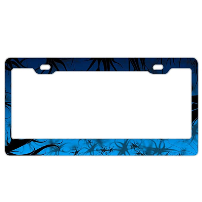 Waterproof Stainless Steel Car Licence Plate Covers for Women//Men//Girls FunnyLpopoiamef Unique Auto License Plate Frame