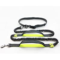 Hands Free Dog Leash Reflective Running Dog Leash with Double Handles, Strong Bungees & Adjustable Waist Belt for Walking Jogging Hiking