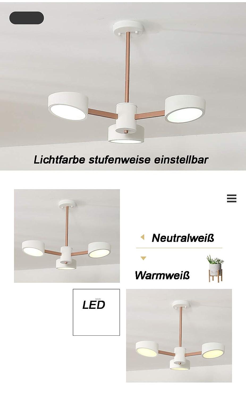 9013D+3+Weiß Eurotondisplay LED Deckenleuchte 9013D mit Lichtschalter Lichtfarbe einstellbar Acryl-Schirm A+ LED Wohnzimmerleuchte (9013D+3+Weiß)
