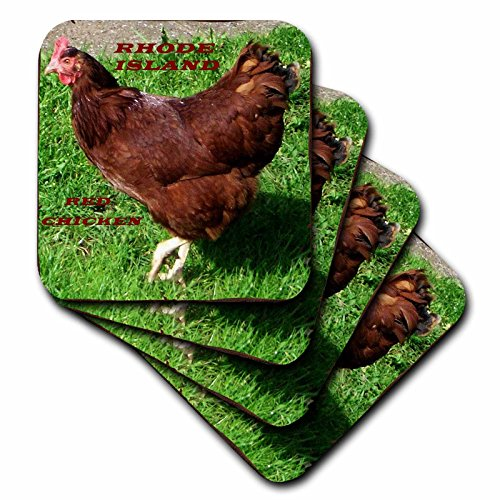 3dRose cst_50942_3 State Bird of Rhode Island Red Chicken-Ceramic Tile Coasters, Set of (Chicken Tile)