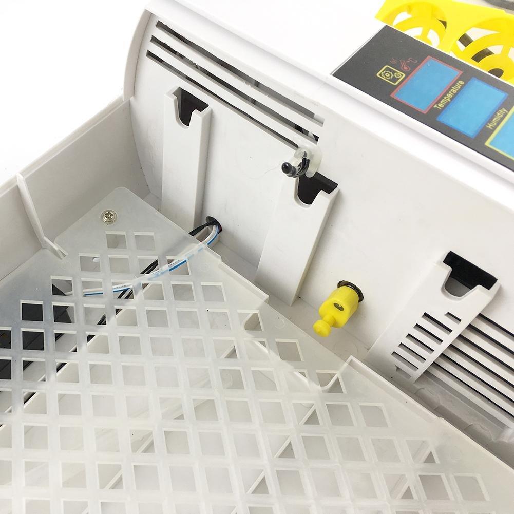 Incubatrice Incubatrice Incubatrice Automatica di Uova 24 Uova di Controllo della Temperatura pollame hatcher per polli Anatre quaglie Uccelli D'Oca 9d2f22