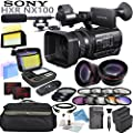 Sony HXR-NX100 w/ Reality TV Bundle: Includes Shotgun Mic, HD Macro Fisheye & Telephoto Lenses, A-Hz Power 160 LED Video Light, SDXC Memory Cards, 3x Battery Packs W/ Charger and more...