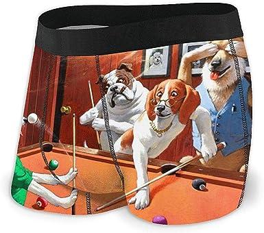 Web--ster Calzoncillos bóxer para Hombre Pantalones Cortos Perros ...