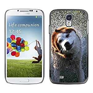 Exotic-Star Snap On Hard Protective Case For Samsung Galaxy S4 IV (I9500 / I9505 / I9505G) / SGH-i337 ( Cool Wet Dog )