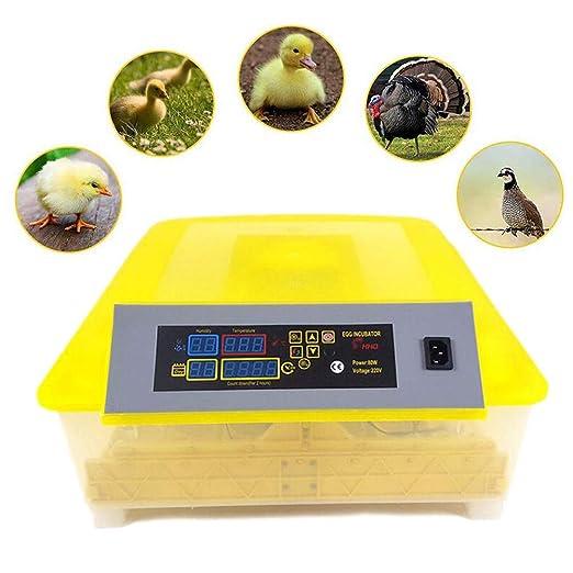 AMhuui Incubadora de Huevos, incubadora Totalmente ...