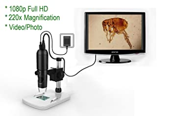 Amazon.com : mustcam 1080p full hd digital microscope hdmi