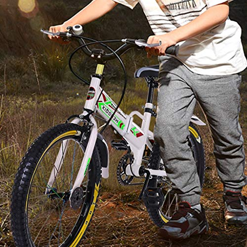 Training Wheels Finelylove 20-inch Youth Mountain Bike for Kids ...