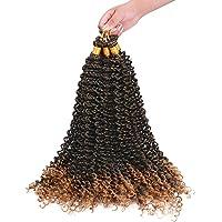 6 Packs Passion Twist Hair 20 Inch Synthetische Water Wave Twists Gehaakte Haarbundels voor Hair Extensions Vlechten…