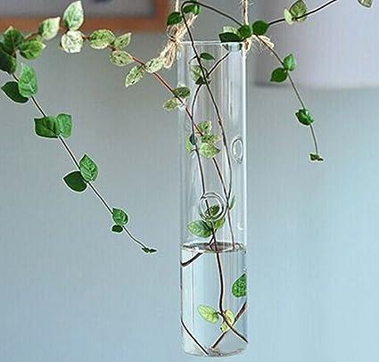 Sharplace 2pcs Botella de Vidrio Tabla Florero Colgante de para Forma de Cilindro Decoración Flores Plantas