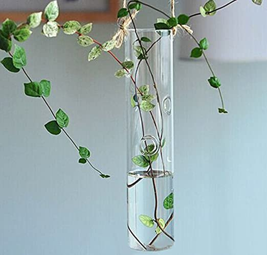 Amazon Cylinder Glass Wall Hanging Vase Table Bottle For Plant