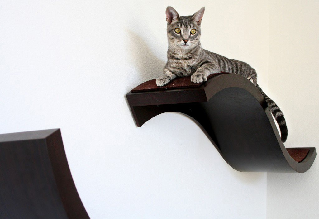 Wave Wall Mounted Cat Shelf