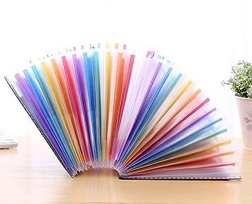 YOTINO Carpeta de acordeón clasificador , Multicolor 24 carpetas ampliable, Gabinete separador A4, Administrador de archivos de plástico de alta capacidad: ...