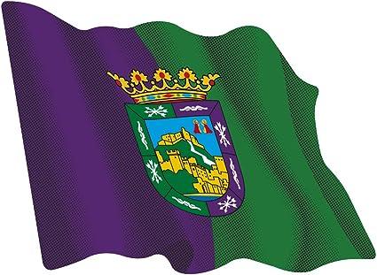 Amazon.es: Artimagen Pegatina Bandera Ondeante Málaga 80x60 mm.
