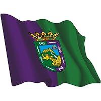 Artimagen Pegatina Bandera Ondeante Málaga 80x60 mm.