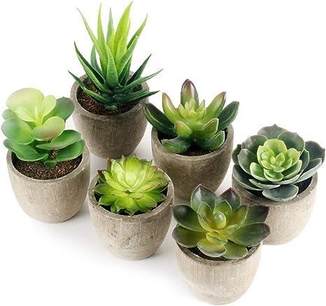 Plastique Artificiel Succulente Aloe Fleur Plante Maison Jardin Table Decor