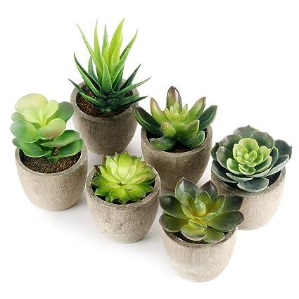 GoMaihe Künstliche Sukkulenten Pflanzen 6 Stücke mit Grauem Topf, 6 x 8cm  Mini Kunststoff Fälschung Grünes Gras, für Wohnzimmer Balkon Badezimmer ...